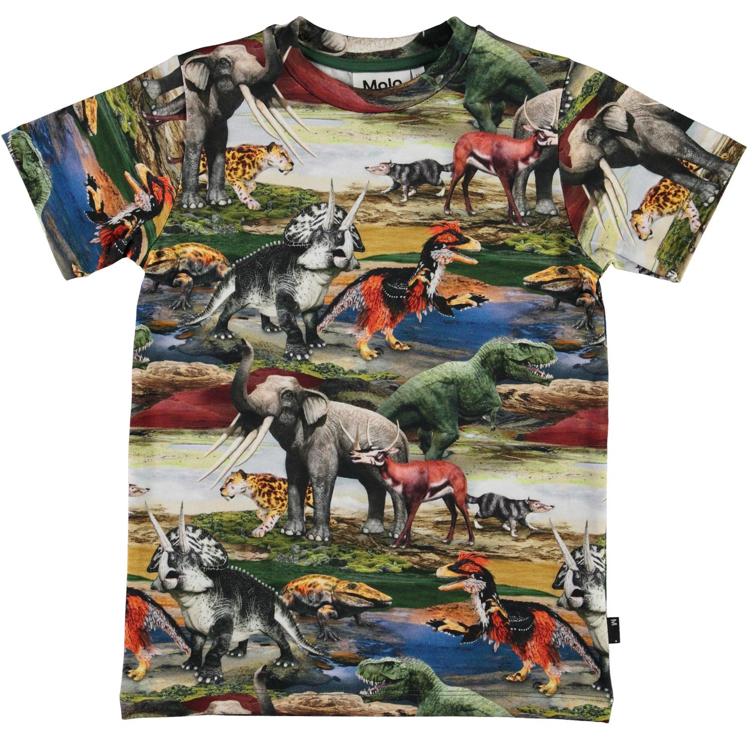 Camiseta Molo Ralphie Ancient World